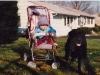 cerby-stroller.jpg